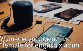 Как убрать уведомление «female for english united kingdom» на Xiaomi